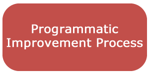 Programmatic Improvement Process